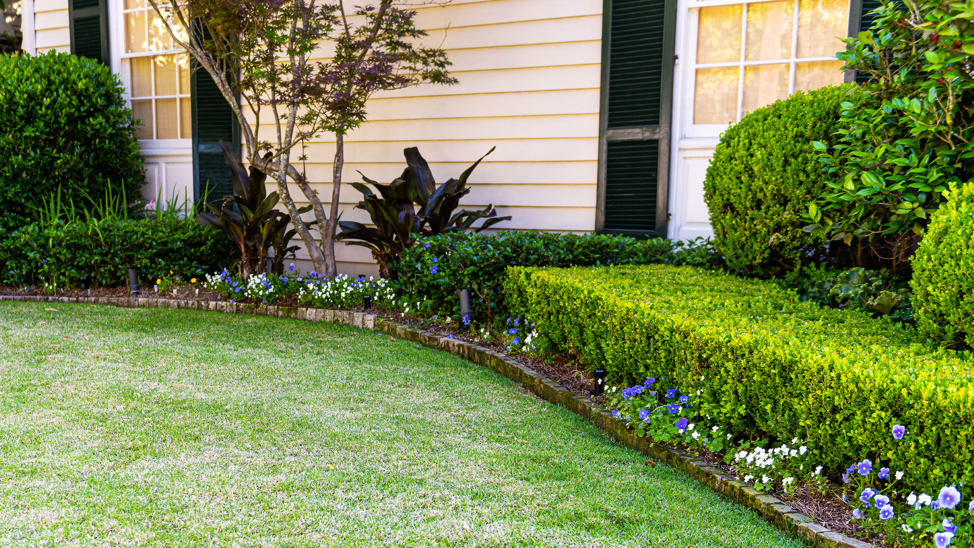 Perfectly trimmed shrubs along a landscaping bed at a property in Troutdale, OR.