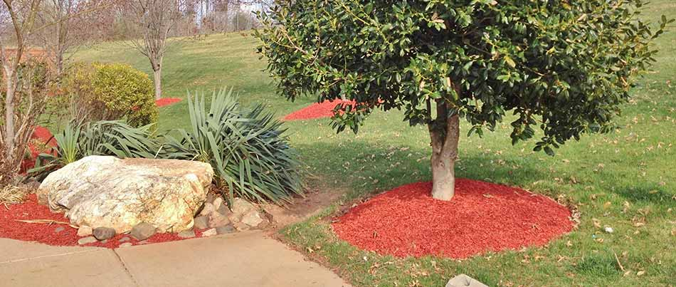 Rock vs. Mulch: Which Is Best for Your Fall Ground Cover