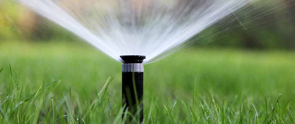 When to Stop Watering Your Lawn in Northern Oregon