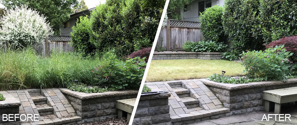 Overgrown yard in Troutdale, OR before and after the cleanup.