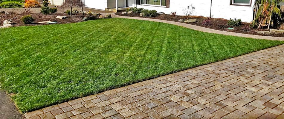 A healthy lawn in Troutdale, OR after a fertilization treatment.