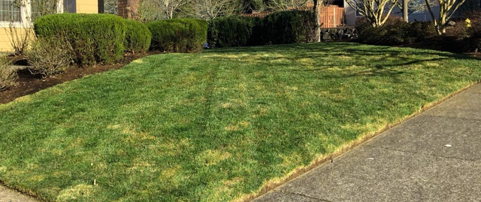 Home in Happy Valley, OR with a freshly mowed front yard.