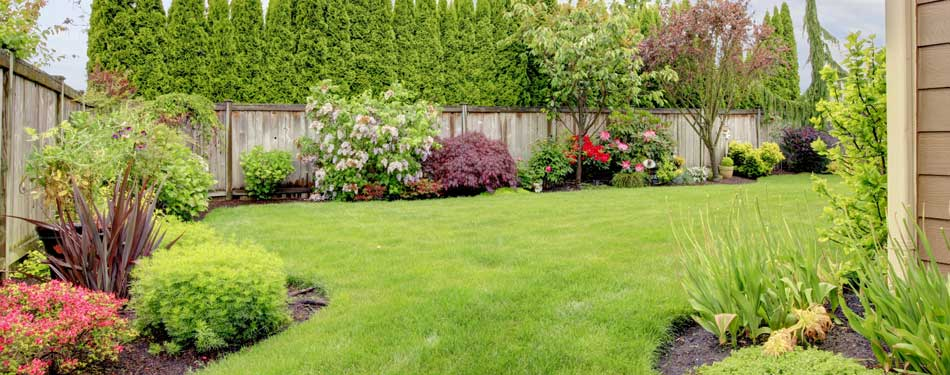 A lawn in Troutdale after a spring cleanup.