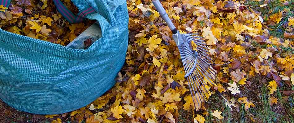 Leaf removal services performed in Troutdale, OR.